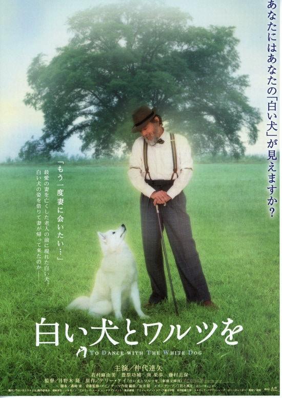 白い犬とワルツを(2002年) フライヤー1
