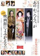 《シネマ歌舞伎》籠釣瓶花街酔醒