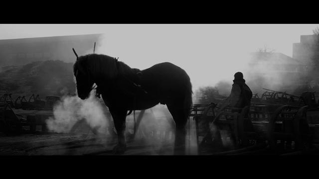 馬ありて 場面写真2