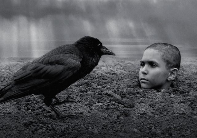異端の鳥 場面写真1