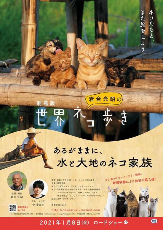 劇場版 岩合光昭の世界ネコ歩き あるがままに、水と大地のネコ家族 フライヤー1