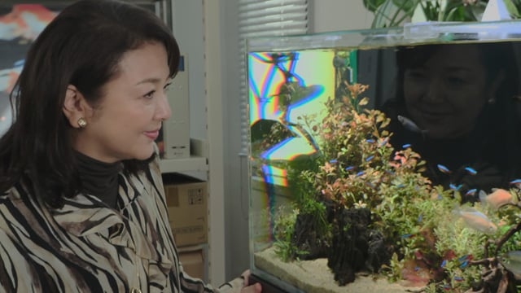 片袖の魚 場面写真11