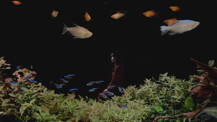 片袖の魚 場面写真5