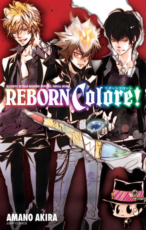 「家庭教師ヒットマンREBORN!公式ビジュアルブック REBORN Colore!」(C)天野明/集英社