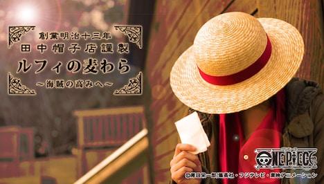 「ルフィの麦わら~海賊の高みへ~」イメージ画像。(C)尾田栄一郎/集英社・フジテレビ・東映アニメーション