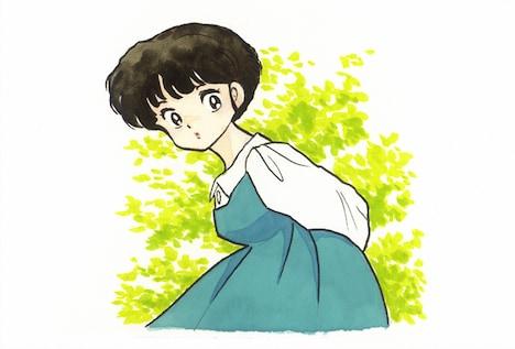 新垣結衣がこだわった、天道あかねの原作イラスト。(C)高橋留美子/小学館
