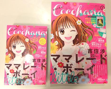 左がCocohanaリトル、右がCocohana1月号本誌。