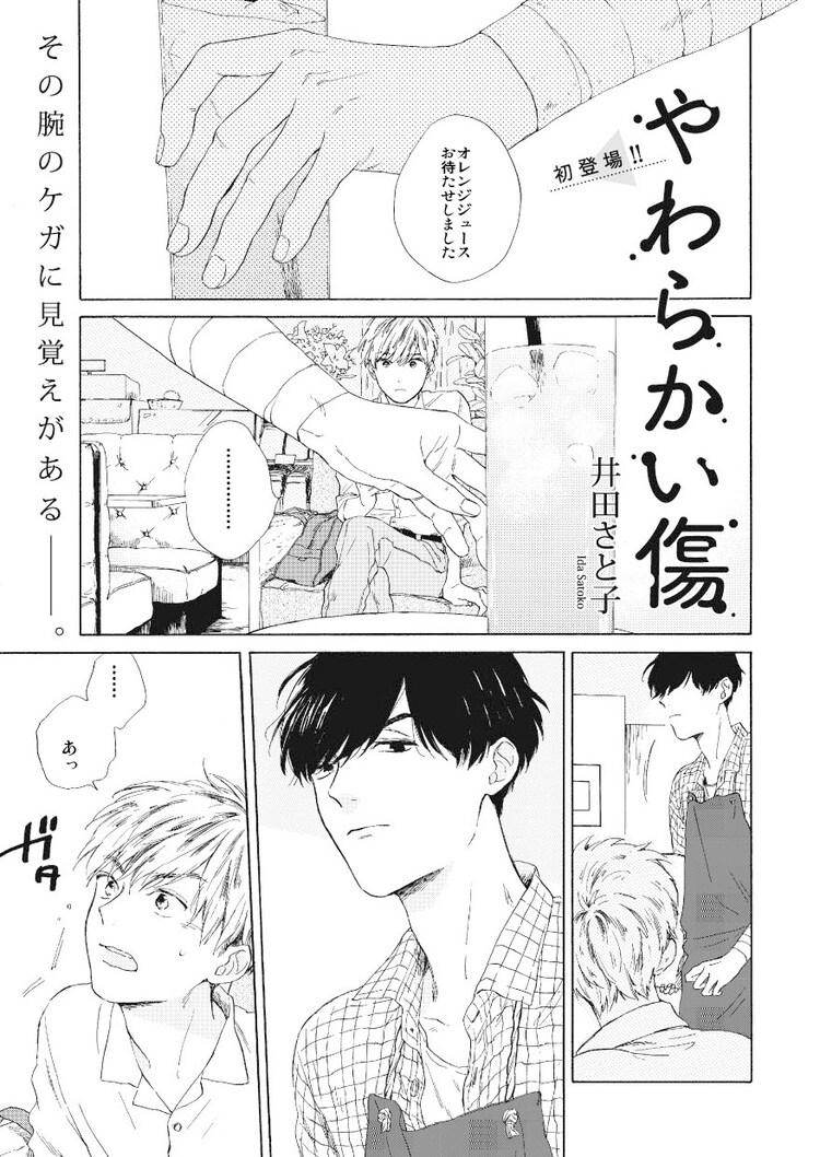 井田さと子「やわらかい傷」