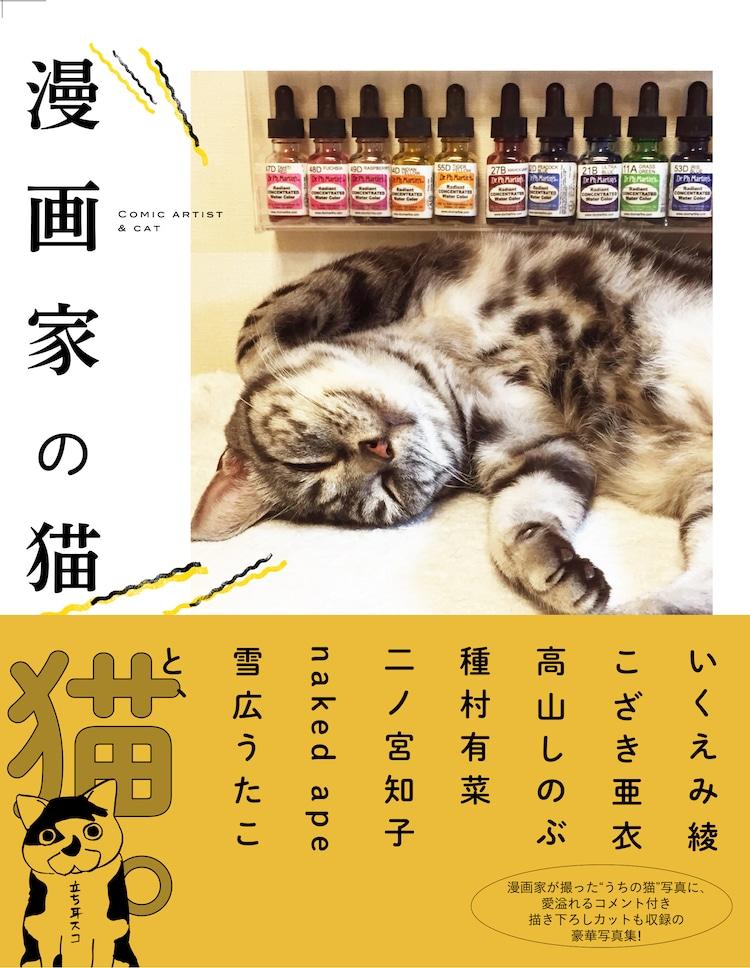 「漫画家の猫」