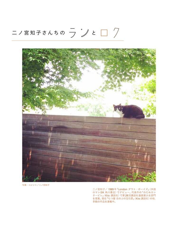 「漫画家の猫」より、二ノ宮知子の愛猫。
