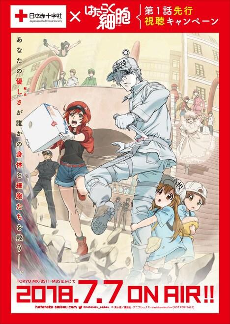 「はたらく細胞」と日本赤十字社のコラボレーションビジュアル。