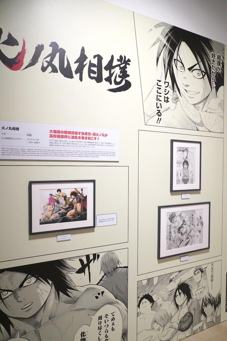 「火ノ丸相撲」の展示コーナー。(c)川田/集英社