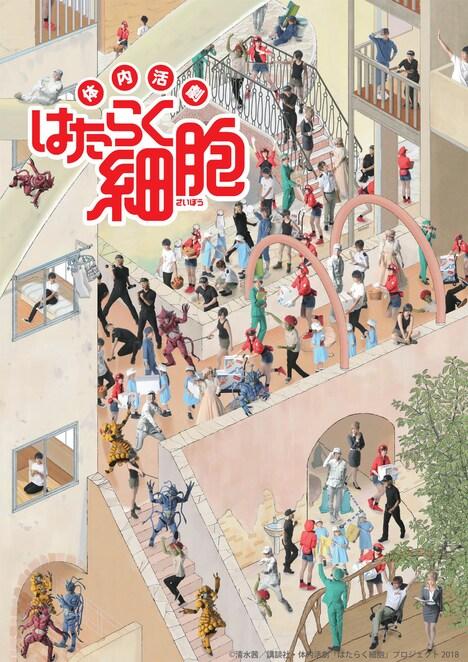 「体内活劇『はたらく細胞』」メインビジュアル第2弾