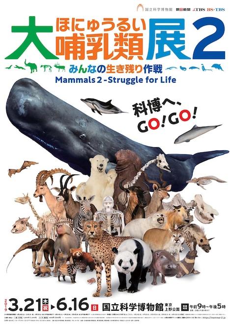 「大哺乳類展2-みんなの生き残り作戦」ポスタービジュアル