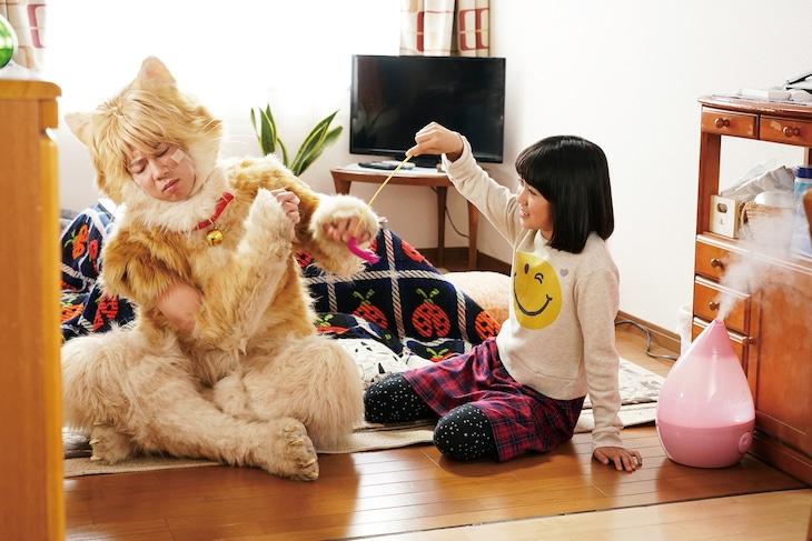 映画「トラさん~僕が猫になったワケ~」の新カット。