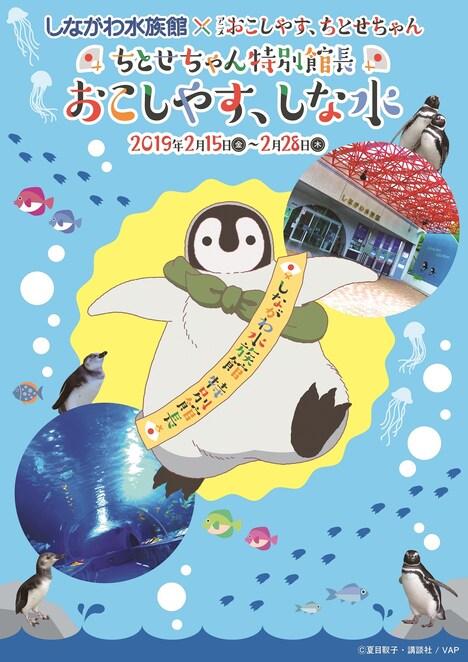 アニメ「おこしやす、ちとせちゃん」としながわ水族館のコラボビジュアル。