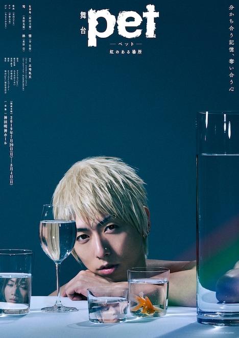 舞台「『pet』─虹のある場所─」より、谷佳樹演じる悟が登場したキービジュアル。