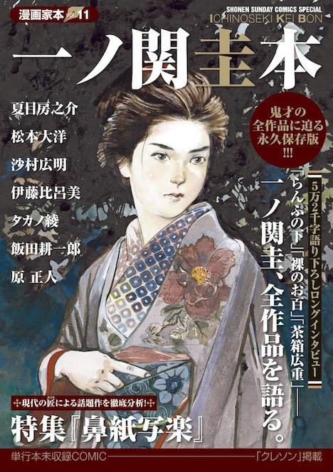「漫画家本vol.11 一ノ関圭本」