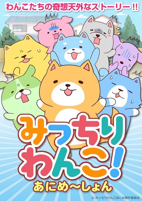 アニメ「みっちりわんこ!あにめ~しょん」キービジュアル
