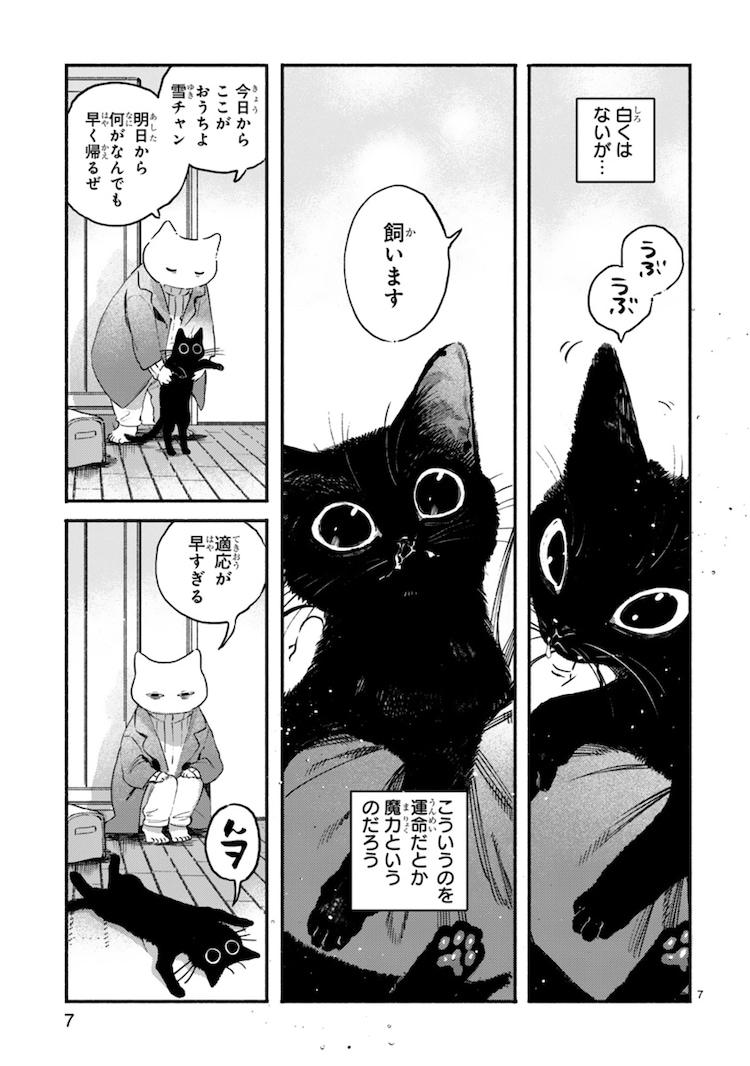 「黒い猫」より。