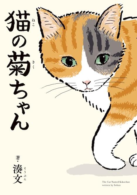 「猫の菊ちゃん」