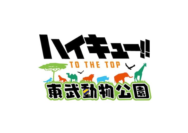 「ハイキュー!! TO THE TOP × 東武動物公園」ロゴ