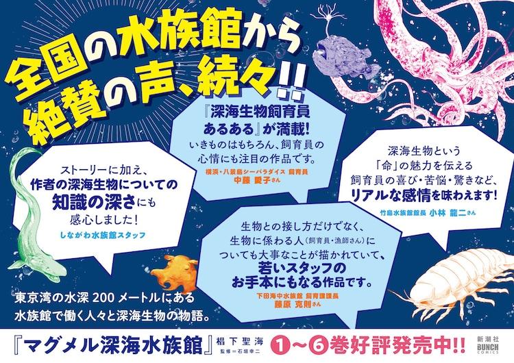 「マグメル深海水族館」6巻に対する水族館で働く人々によるコメント。