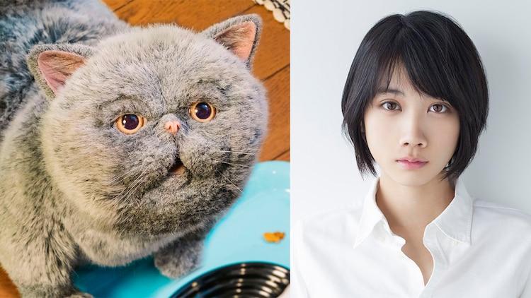 マリン(左)、松本穂香(右)。(c)「おじさまと猫」製作委員会