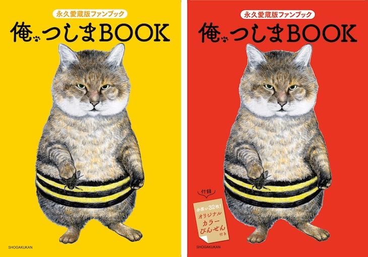 左から「俺、つしまBOOK」の通常版、限定版。※画像は表紙をイメージしたもので、デザインは変更となる可能性がある。