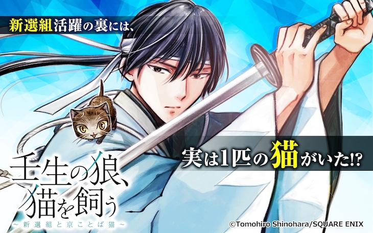 「壬生の狼、猫を飼う~新選組と京ことば猫~」ビジュアル