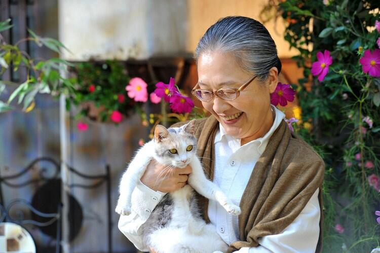 「先生と迷い猫」のワンシーン。(c)2015「先生と迷い猫」製作委員会