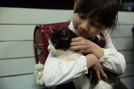 「4/猫-ねこぶんのよん-」 (c)2015 埼玉県/SKIPシティ 彩の国ビジュアルプラザ