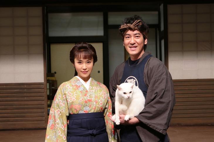 スペシャルドラマ「猫侍 玉之丞、江戸へ行く」の出演者たち。
