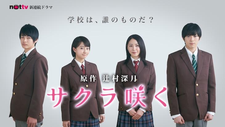 「サクラ咲く」キービジュアル (c)mmbi,Inc. ALL RIGHTS RESERVED.