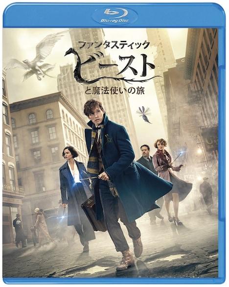 「ファンタスティック・ビーストと魔法使いの旅」ブルーレイ&DVDセットのジャケット。