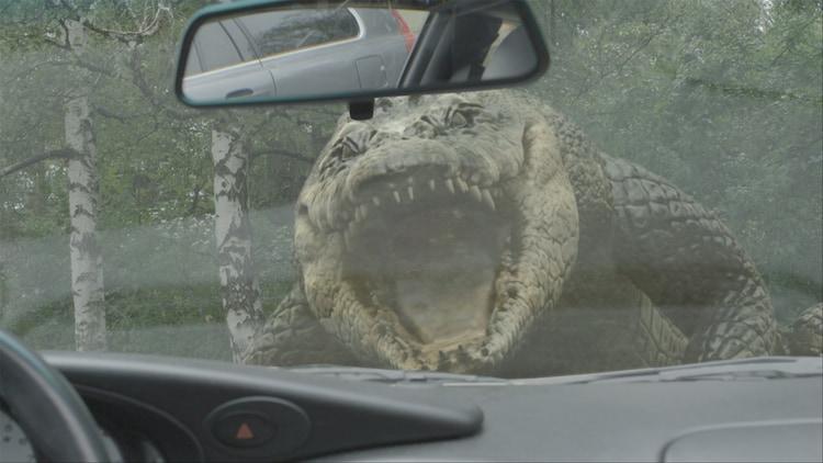 アナコンダ 巨大