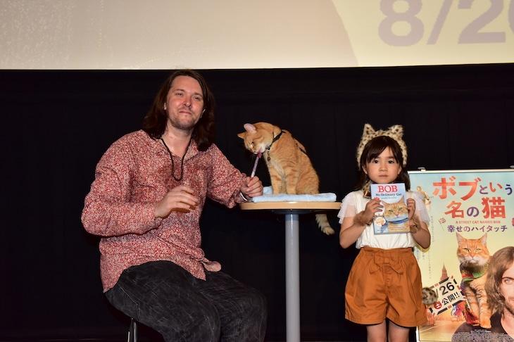 「ボブという名の猫 幸せのハイタッチ」ジャパンプレミアの様子。左からジェームズ・ボーエン、ボブ、新津ちせ。