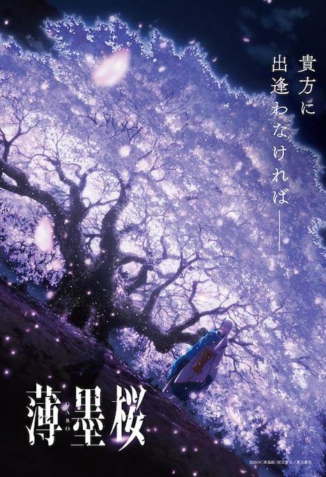 「薄墨桜 -GARO-」ティザービジュアル