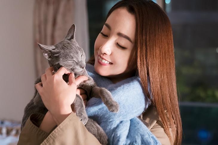 「猫は抱くもの」