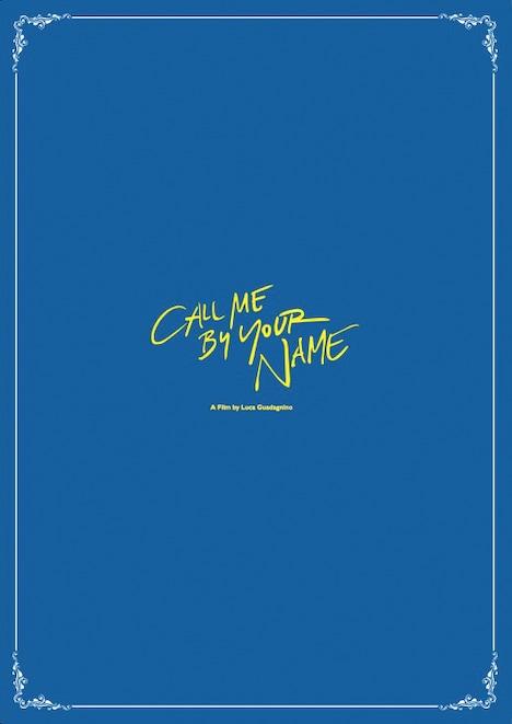 「君の名前で僕を呼んで」豪華版パンフレットの表紙。