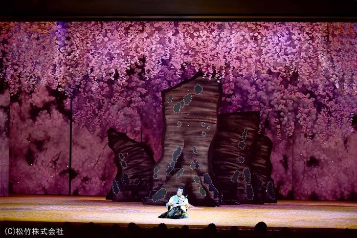 シネマ歌舞伎「野田版 桜の森の満開の下」