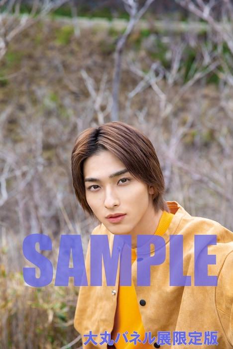 大丸神戸店パネル展限定版の生写真サンプル。