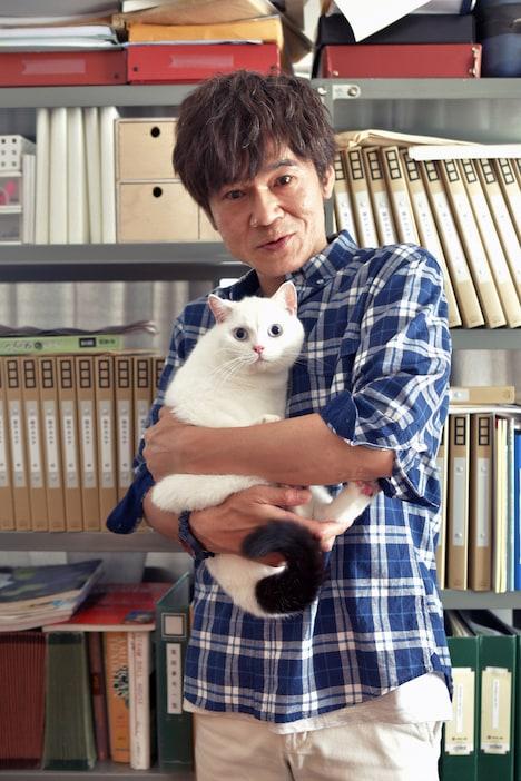 「猫探偵の事件簿2」