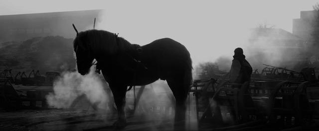 「馬ありて」