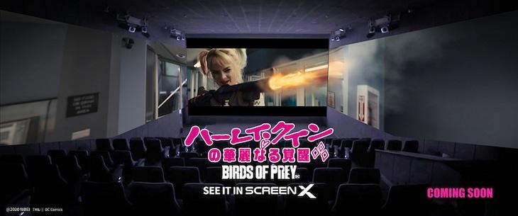 「ハーレイ・クインの華麗なる覚醒 BIRDS OF PREY」ScreenX版イメージ画像