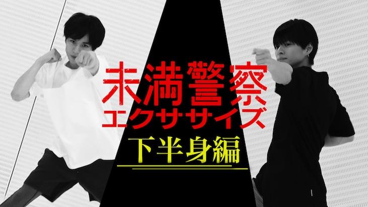左から中島健人、平野紫耀。