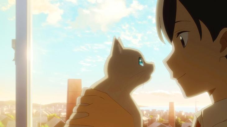 「泣きたい私は猫をかぶる」