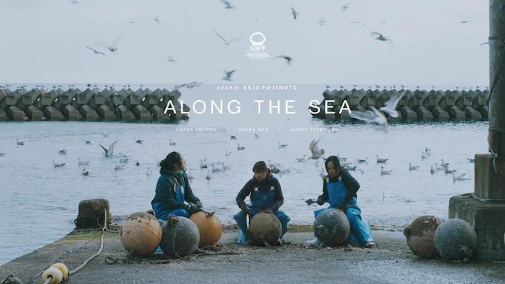 「海辺の彼女たち」ビジュアル