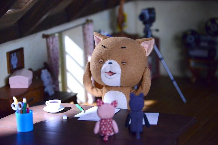 「こまねこ」新作ショートアニメの撮影の様子。