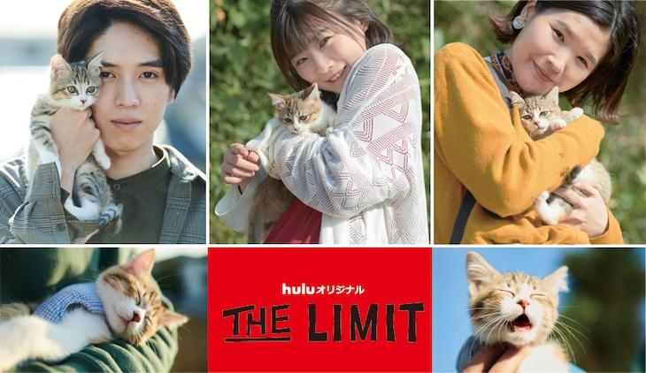 「THE LIMIT」第1話「ネコと井戸」オフショット